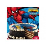 Spiderman Large 16cm Printed Sugar Disc Cake Topper